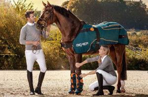 bemer_horse